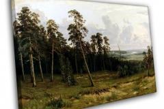 Опушка леса