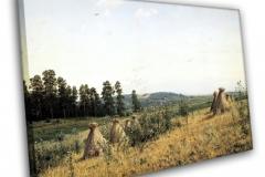 Пейзаж полесья
